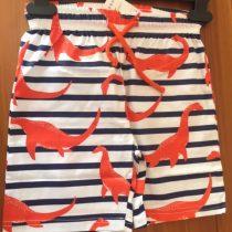 Dinosaur Beach Shorts